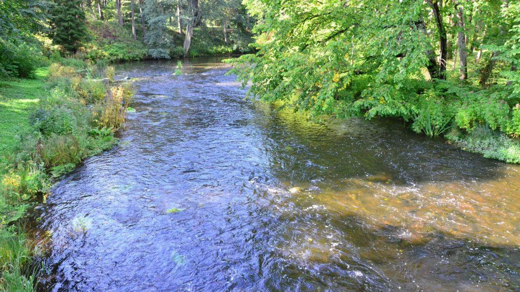 Estonia river