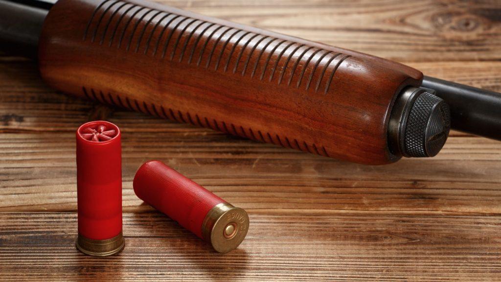 12 gauge shotgun