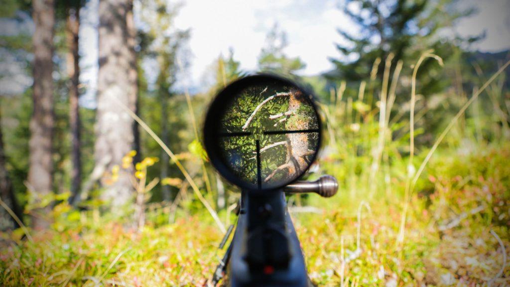 view through rifle scope