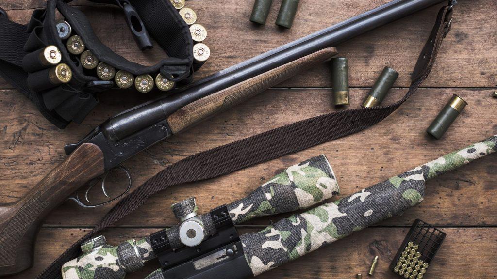 Iron Sigt vs Rifle Scope