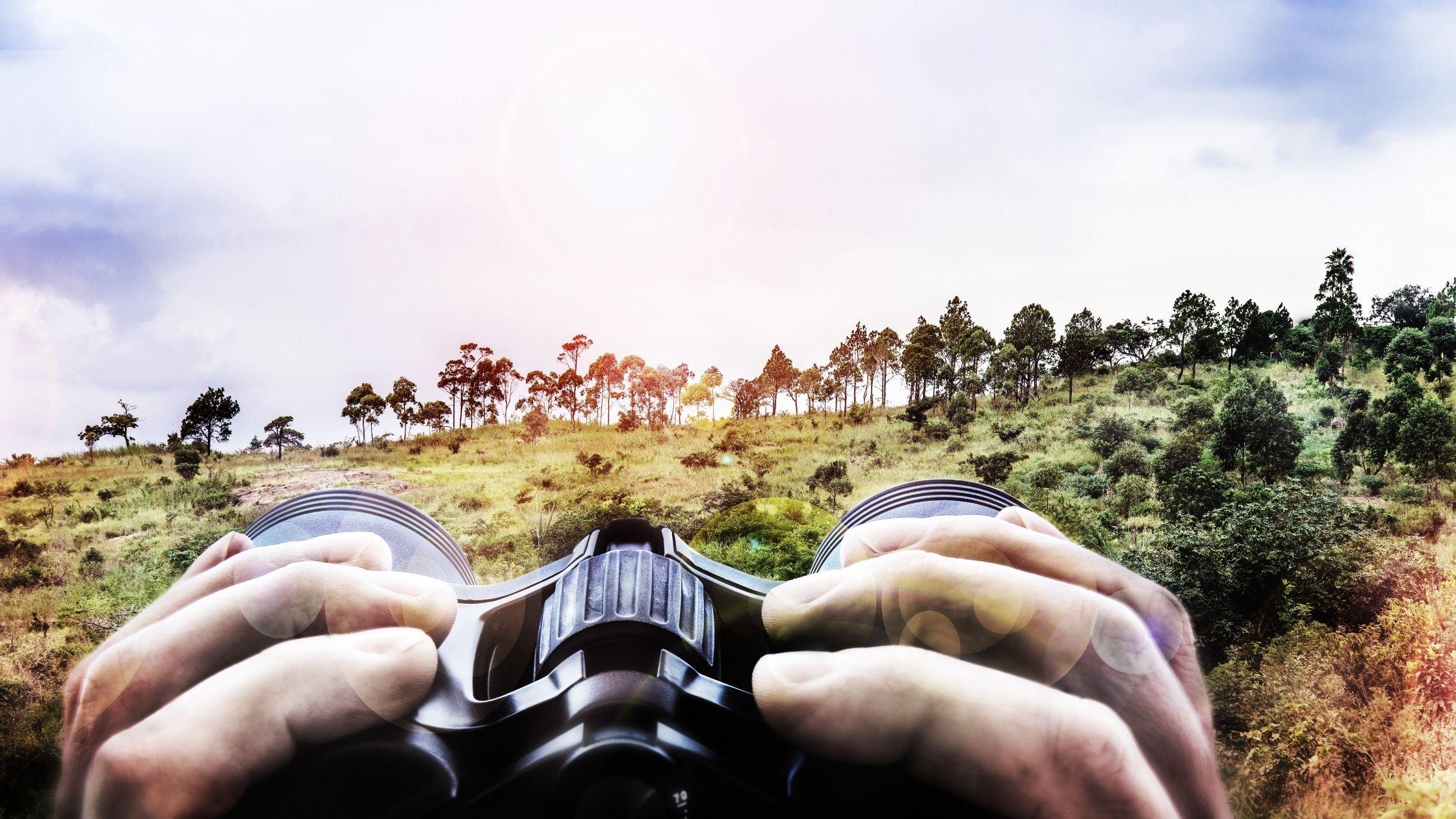 binoculars 10x42 vs 12x50