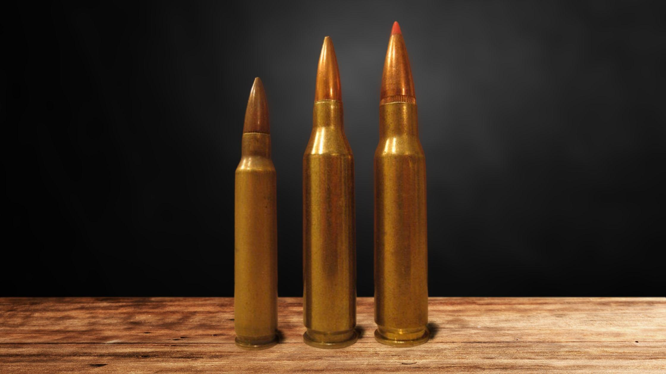 Best 243 Bullet for Deer
