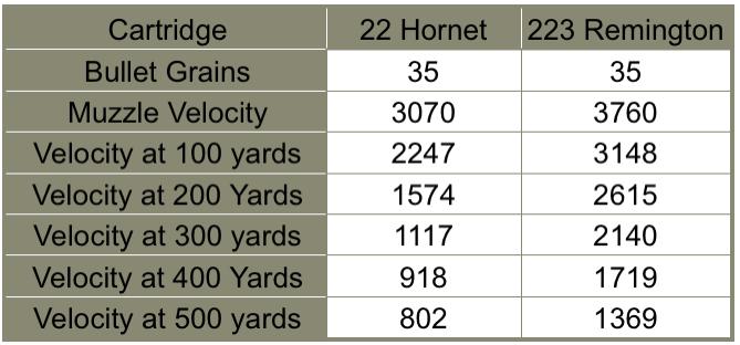 22 hornet vs 223