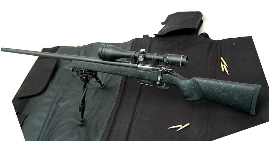 3 Best 22 Hornet Rifles